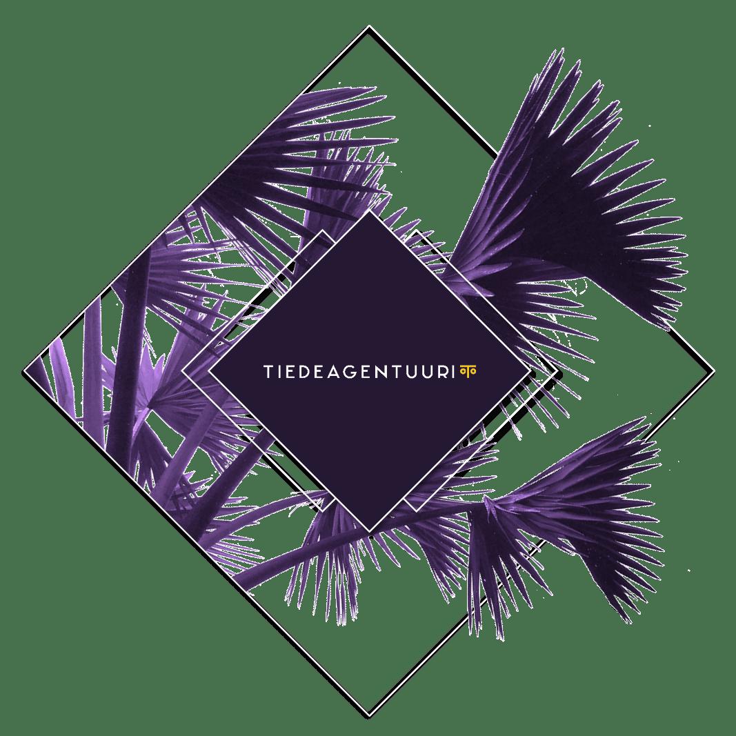 TIEDEAGENTUURI_m